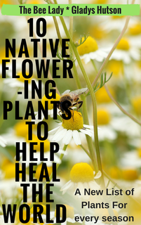 10 Native Flowers to Help Heal the World